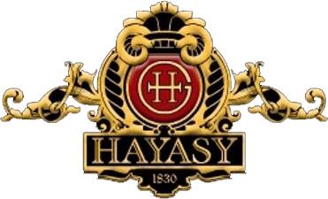hayasy logo